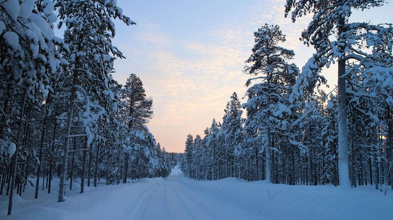 Финляндия pixabay.com