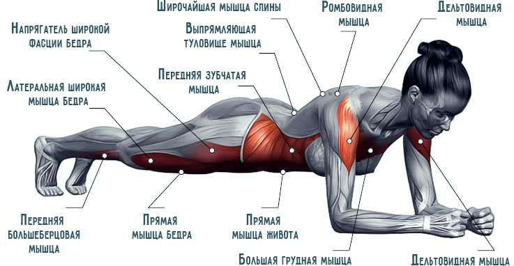 Интенсивная нагрузка на все группы мышц
