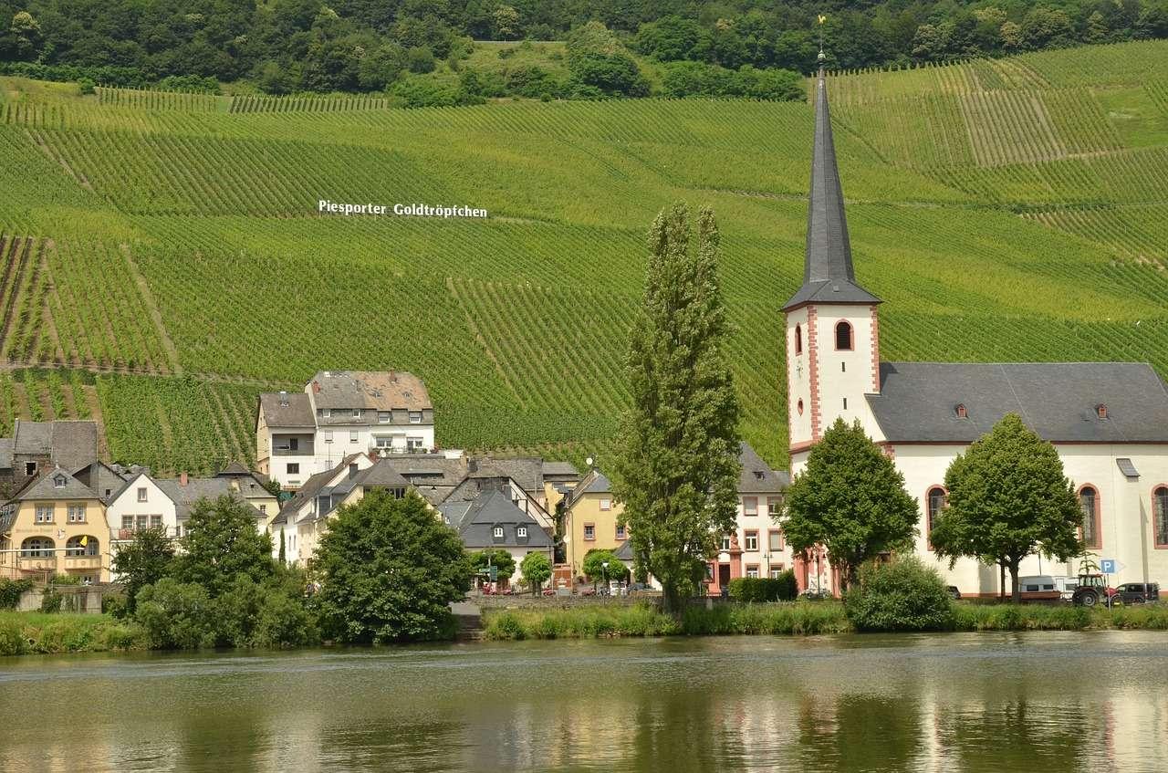 Река Мозель Вино Мозельвейн Piesport Германия