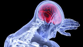 10 популярных привычек, которые негативно влияют на мозг