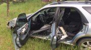 В США медведь угнал автомобиль и устроил ДТП