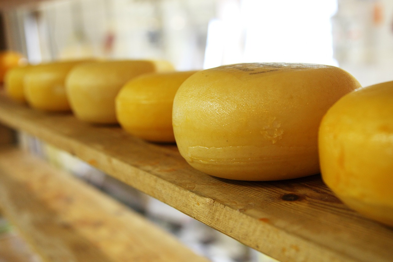 Интересные факты о сыре